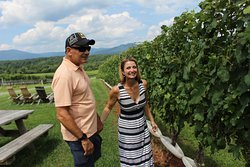 Celebrating 33 years of marriage, we had a wonderful experience on our wine tour.