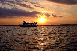 Mahi Mahi Cruises & Charters