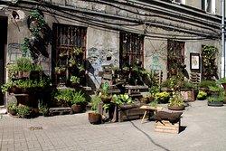 Można też usiąść w części roślinnej ; )