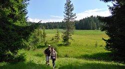 Randonnée vers le Lac Noir, parc national du Durmitor