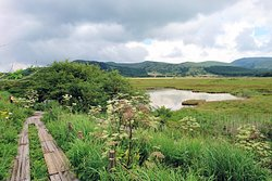 Yashimagahara Marsh