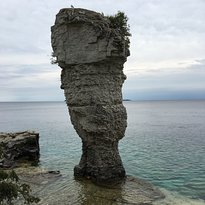 """One of the """"Flower Pots"""" on Flower Pot Island (338425089)"""