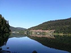 Seebad Lunz Am See