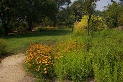 McConnell Arboretum & Botanical Gardens