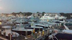 Amazing view of the marina