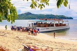 Catamaran Vision Ocean Tours
