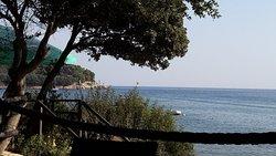 Beach Bar Palma