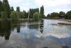 T. Shevchenko Park