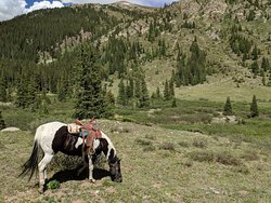 Independence Pass Outfitting Company