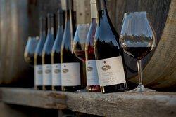 Lazy Creek Vineyards