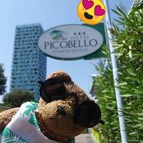 Hotel  Picobello