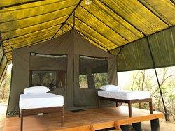 The Topan Experience - Camp Yala