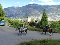 Horse's Heaven Vda