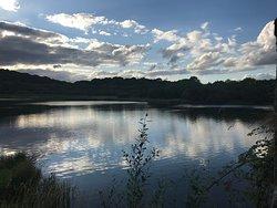 Quoile Pondage Nature Reserve