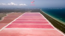 Las Coloradas Tours