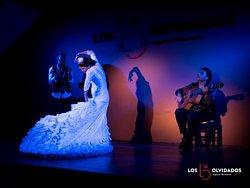 Flamenco los Olvidados