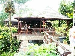 Sewa Mobil di Bali Terpercaya & Recommended