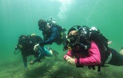 Florida Underwater Sports