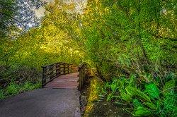 Scriber Lake Park