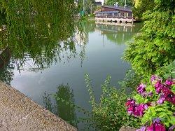 Ariana Lake