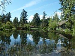 Shevlin Park