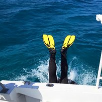 Dive for Fun Watersport