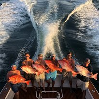 Wild Orange Charters