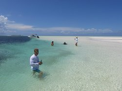 The magnificent sandbar