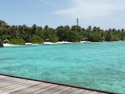 Nika il Top alle Maldive