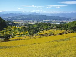 Inagura Rice Terraces