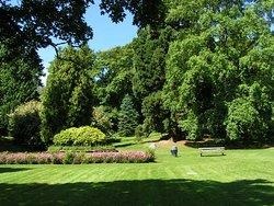 Leschi Park