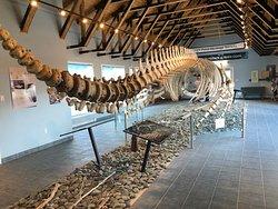 King's Point Whale Pavilion