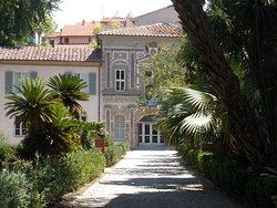 Orto e Museo Botanico di Pisa