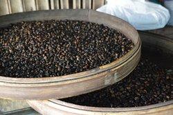 Agro Santi Coffee Plantation