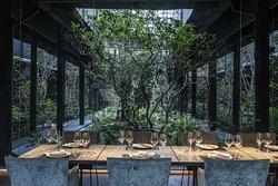 Botanical view while enjoying the enchanted dining experience