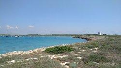 Parco Naturale Regionale Isola di S.Andrea e Litorale di Punta Pizzo,