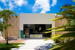 Leaf Luxury Spa