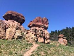 Red Giant Stone Mushrooms