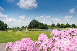 Golfresort Gernsheim - Lufthansa Course direkt am Hotel auf dem Golfplatz, HOTEL absolute