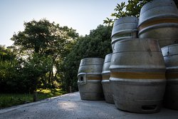 Casks waiting for filling with beer