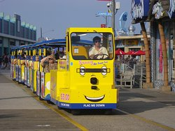 Sightseers Trams