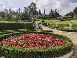 Karnataka Siri Horticulture Garden