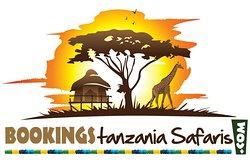 Welcome to Bookings Tanzania Safaris