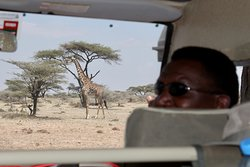 Prosper (our driver) and a regular view out the front of the car.