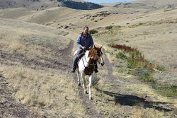 Rocking Z – The Best Guest Ranch in the West!