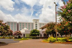 Delta Hotels by Marriott Chesapeake-Norfolk