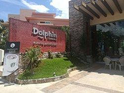 Dolphin Coffee Shop