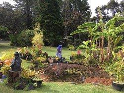Volcano Garden Arts