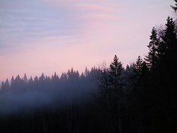 Winter evening in Oslomarka.
