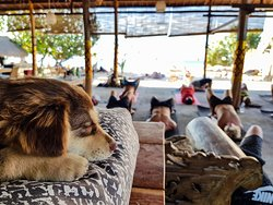Sanctuary Yoga Nusa Penida.
